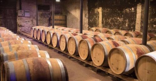 Luftbefeuchtung im Weinkeller